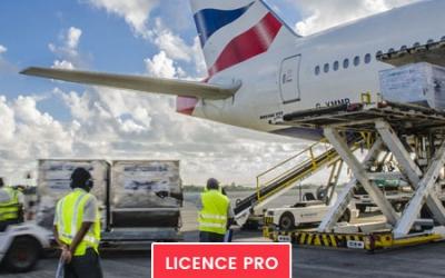 Licence Pro Management des Services Aériens